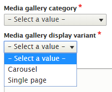 Screenshot of category and display variant fields for a media gallery