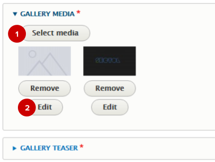 Screenshot of gallery media fields for a media gallery node